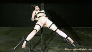 Servant pooch [2011,InfernalRestraints,Hazel Hypnotic,Spanking,BDSM,Canning][Eng]