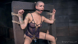 A Robot Has No Rights -  Abigail Dupree [2015,Domination,Torture,Spanking][Eng]