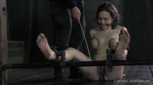 Chained and Tamed [2018,IR,Cool Girl,BDSM][Eng]
