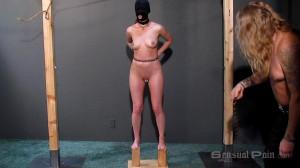 Interrogation of slave abigail [Abigail Dupree,Whipping,BDSM,Cannin][Eng]