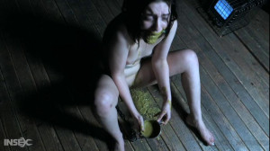 SAW [Abigail Annalee,Needles,BDSM,Anal Play][Eng]