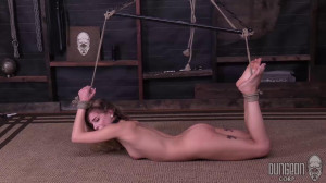 Sydney Cole - Binding the Beauty [2017,Torture,Bondage][Eng]