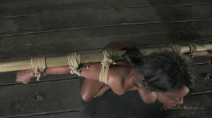 Professional Body Builder, bound, oiled, hung upside down [2018,SB,Cool Girl,BDSM][Eng]