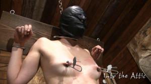 Brinn blow [2017,Bondage,Bdsm,Torture][Eng]