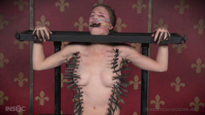 Insatiable Ass Part 1 - Ashley Lane [Crying,Metal Bondage,Cattle Prod][Eng]