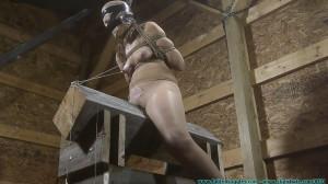 Hard bondage, torture, strappado and hogtie for slave bitch [2018][Eng]