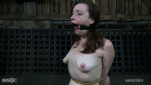 Maggie mead living bondage fantasy [2021,Maggie Mead,Vibrator,Ring Gag,Stockings][Eng]