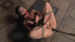Barn Exercises [2018,HT,Cool Girl,BDSM][Eng]