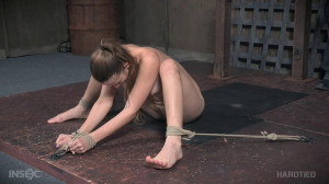 Tickle Whipped [2018,BDSM,Bondage,Humiliation][Eng]