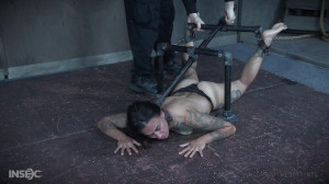 The Joy of Suffering [2018,Tattoo,Humilation,BDSM][Eng]