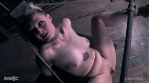 Begged and Denied [2018,Arielle Aquinas,Torture,Bondage,BDSM][Eng]