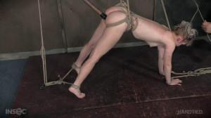 Rigged [Anna Tyler,Bondage,Humiliation,BDSM][Eng]
