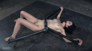 Bound In Pipes And Taught to Submit [Torture,Submission,Rope Bondage][Eng]