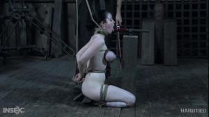 Getting Ahead [Sybil Hawthorne,Vibrator,Bondage,Tits Torture][Eng]