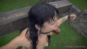 IR - Siouxsie Q - Smut Writer, Part Two [2014,Siouxsie Q,Extreme Bondage,Humilation,BDSM][Eng]