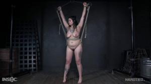 The Tits [2020,Humiliation,BDSM,Torture][Eng]