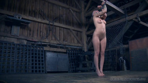 The Extended Feed of Miss Dupree Part 2 [2015,Abigail Dupree,Torture,Humiliation,BDSM][Eng]