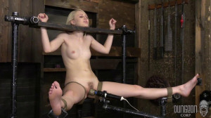 Dungeon Corp - Lily Rader - Suffering for Rare Beauty [2018,Dungeon Corp,Lily Rader,bdsm rough sex,device bondage torture,rope][Eng]