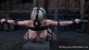 Cherry Torn (Torn Apart) [InfernalRestraints,Cherry Torn,Metal Bondage,Nipple Clamps,Caning][Eng]