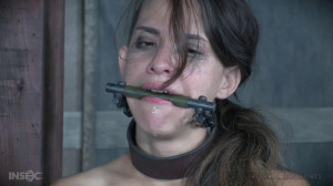 False Pretenses - Devilynne [2018,IR,Cool Girl,BDSM][Eng]