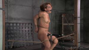 Squirt Fest - Savannah Fox, Jack Hammer [2014,Torture,BDSM,Rope Bondage][Eng]