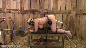 HuCow 54 – red cow milker [2021,HuCow 54,milking pump,ball gag,blindfold][Eng]