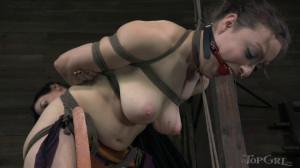 Uncaging Dixon's Inner Squirt - Dixon Mason [2014,Bondage,Domination,BDSM][Eng]