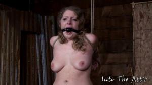Tracy extreme orgasm [2017,Bdsm,Bondage,Torture][Eng]