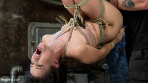 Sweet Yhivi is Decimated in Brutal Bondage, Torment, and Screaming Orgasms! [Kink: Hogtied,Yhivi][Eng]