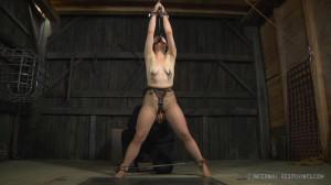 IR - Siouxsie Q - Smut Writer, Part One [2014,Siouxsie Q,BDSM,Domination,Extreme Bondage][Eng]