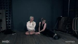 The Agents Part 2 [BDSM,Torture,Humiliation][Eng]