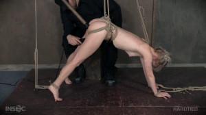 Anna Tyler [2016,Anna Tyler,BDSM,Bondage,Humiliation][Eng]