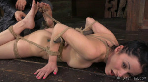 The Good Little Slave - Veruca James [2014,Spanking,Domination,Rope Bondage][Eng]