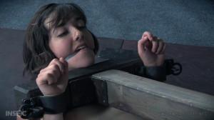 Personal Pillory - Sadie Franklin [2018,IR,Cool Girl,BDSM][Eng]