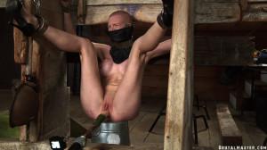 Bdsm Most Popular Greyhound Barn Torture Electric [2020,BrutalMaster,Corporal Punishment,Torture,BDSM][Eng]