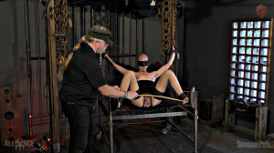 Sex slave Sling and Machine - Abigail Dupree [Eng]