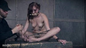 Stuff Me Staar , Stephie Staar [2018,IR,Cool Girl,BDSM][Eng]