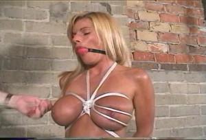 Breast Control [2010,Bdsm,Bondage,Humilation][Eng]