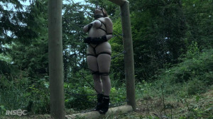 Gronc'd [2018,BDSM,Whipping,Torture][Eng]