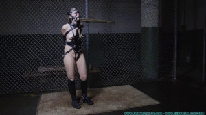HD Bdsm Sex Videos The Vigilante Turns His  RachePony Girl Part 2 [FutileStruggles,Ponyplay ,Leather ,Bondage ][Eng]