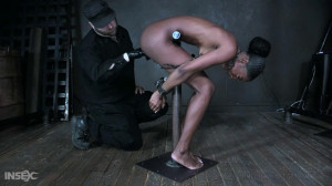 Amari is put on display for our pleasure [2021,Amari Anne,Humiliation,BDSM,Torture][Eng]