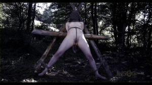 Wood's Bondage and Tortures For Sierra Cirque [2017,Sierra Cirque,Torture,Bondage,BDSM][Eng]