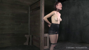 Whipped, Bound And Boxed For Ashley Lane [2014,Ashley Lane,Dildo,Arm Binder,Torture][Eng]