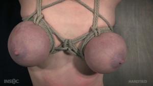 Dee williams Bondage [2017,Torture,Humilation,Bondage][Eng]
