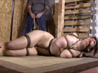 Brendasbound - Hogtied And Clamped