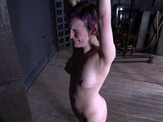 Feast Your Eyes Part 3 , Sierra Cirque , HD 720p