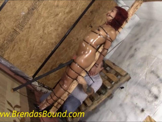 Brendasbound Punishing Zip Ties
