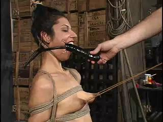 Insex - Tests 11 (Tests XI) (703, Natalie)