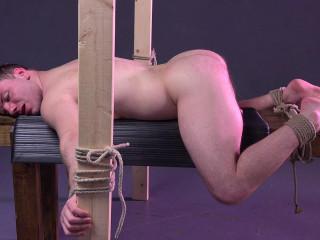 Doug bondage dildo