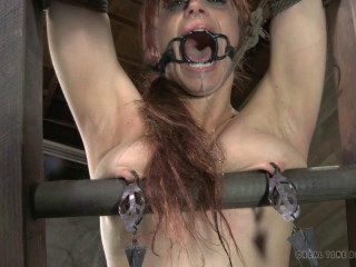 Bella Rossi plays a humiliating puppy play game